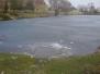 Rybník Mirešák v zimě